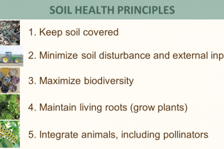 Soil Health Principles
